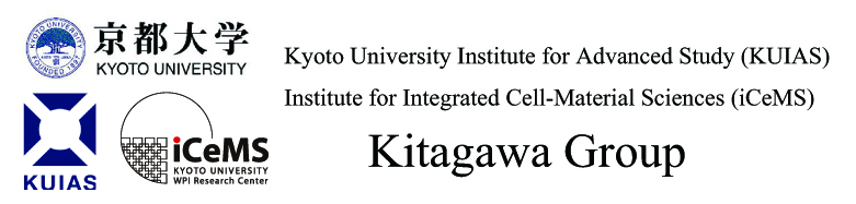 Kitagawa Group, iCeMS